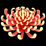 f_flower1730